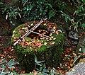 Daitoku-ji (4580434024).jpg