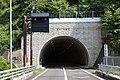 Dakehorayamasakura Tunnel.jpg