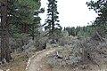 Davis Creek Park - panoramio (2).jpg