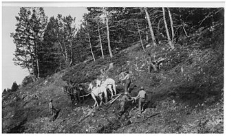 Bighorn National Forest - Men work on the Dayton-Kane road over the mountains in the 1920s