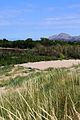 De les dunes al Montgrí.jpg