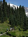 Dead Horse Creek Trail (c3da7025ba8a4e158b79fb1309709696).JPG