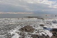 Dead Sea - panoramio (4).jpg