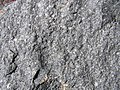 Deakin Volcanics Ignimbrite Conder.jpg