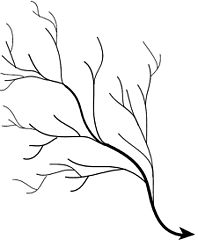 what is dendritic drainage pattern