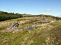 Deserted settlement at An Carn - geograph.org.uk - 1327836.jpg