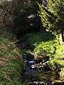 Detalle del nacimiento del río llamado Ebro.JPG