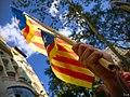 Diada De Catalunya (227789013).jpeg