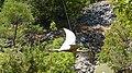 Dinopark, Funtana, Croatia (dinopark.hr) - panoramio (11).jpg