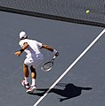 Djoker volley - Flickr - chascow.jpg
