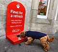 Dog refreshment point at Durham railway station.jpg