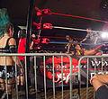 Dragon Gate USA @ WrestleReunion 5.jpg