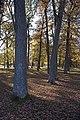 Drottningholm - KMB - 16000300032556.jpg