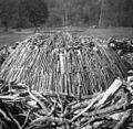 Drva pripravljena za kopo, Kal nad Javorovico 1952.jpg