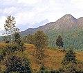 Dukes Pass, The Trossachs. - geograph.org.uk - 429316.jpg