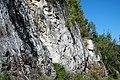 Dunham Dolomite (Lower Cambrian; Route 2 roadcut, southeast of the Lamoille River bridge, Vermont, USA) 12.jpg