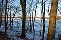 Durch den Wald auf den See - panoramio.jpg