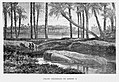 "Egipto, 1882 ""Coloso derribado de Ramses II"" (21444406851).jpg"