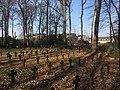 Ehrenfriedhof Lübeck 4707.jpg