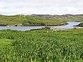 Eilean Chaluim Chille - geograph.org.uk - 497326.jpg