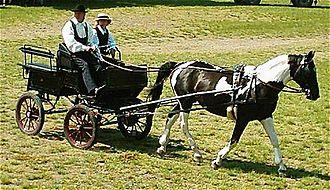 Wagonette - Wagonette in use