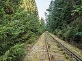 Eisenbahnlinie-Saalestauseen-8132391.jpg