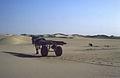 El Qued prema Ghardai - traženje pustinjske ruže 1985..jpg
