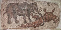 Elephant Attacking a Feline.jpg