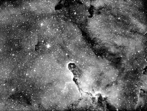 Elephant's Trunk nebula - Image: Elephant Trunk Nebula