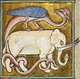 Elephant et dragon royal MS12.jpg
