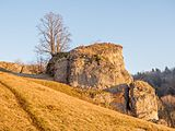 Ellerberg-Eulenstein-PC310293.jpg
