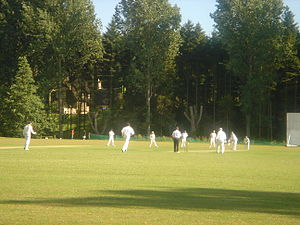 Village cricket - A typical summer scene of village cricket