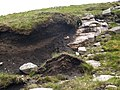 Eroded peat bog and sandstone outcrop. - geograph.org.uk - 220557.jpg