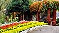 Estate Bungalow, Munnar - panoramio (3).jpg