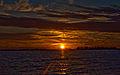 Esteros Del Ibera, Corrientes, Argentina, 2nd. Jan 2011 - Flickr - PhillipC (5).jpg