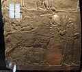 Età neoassira, palafrenieri con cavalli di razza, da pal. n di assurbanipal a ninive, 648-31 ac ca. 2.JPG