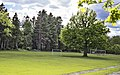European Tree of the Year 2015 growing in the centre of football field - panoramio.jpg