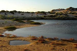 Cape Range National Park - Cape Range Landscape