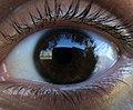 Eye 01.jpg