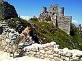 Ezechiele a Rocca di Calascio 01.jpg