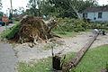 FEMA - 13850 - Photograph by Mark Wolfe taken on 07-12-2005 in Alabama.jpg