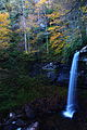 Fall-foliage-beautiful-forest-autumn-waterfalls - West Virginia - ForestWander.jpg