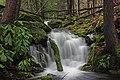 Fall Creek (Revisited) (10) (11659905123).jpg