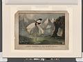 Fanny Ellsler (sic) in The shadow dance (NYPL b12161929-5138425).tiff
