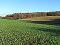 Farmland, Peppard - geograph.org.uk - 1776088.jpg