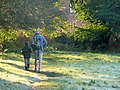 Father and Son - geograph.org.uk - 1247314.jpg