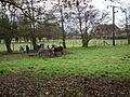 Feoffee Common Farm - geograph.org.uk - 1049603.jpg