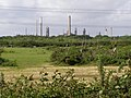 Fields Heath - geograph.org.uk - 438636.jpg