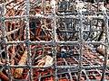 Fishing nets - Alvor Harbour - The Algarve, Portugal (1468998577).jpg