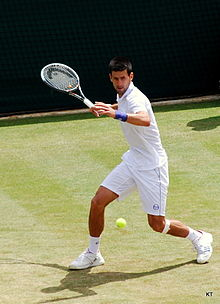 Flickr - Carine06 - Novak Djokovic (4).jpg